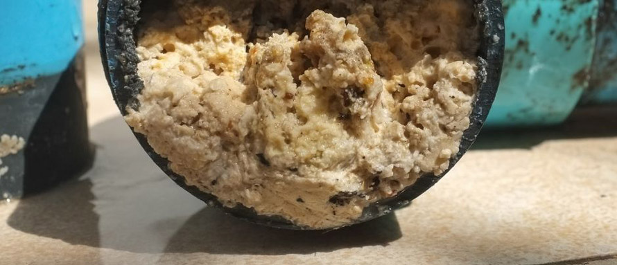 Do Your Part—Fight The Fatberg!